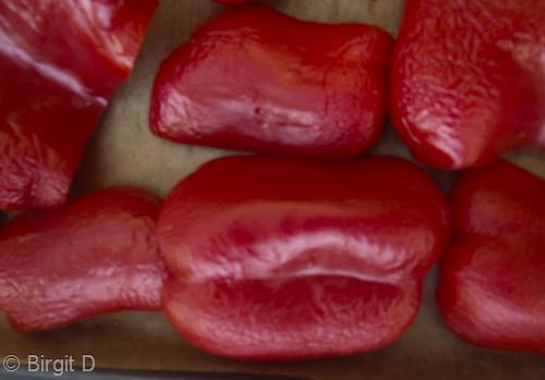 Paprika auf Backblech legen