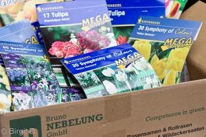 Blumenzwiebelpaket